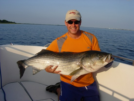 46lb Striped Bass
