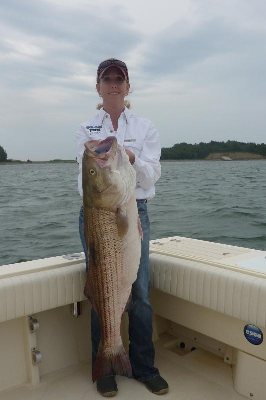 44 inch 30lb. Striped Bass