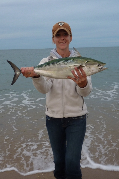 Albie caught in Nantucket Surf