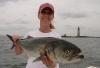 Aug 2010 11.2lb Bomber Bluefish